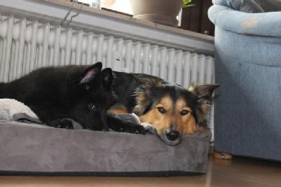 Barry-mit-seiner-neuen-Freundin